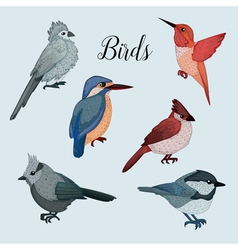 Birds set in hand drawn style vector