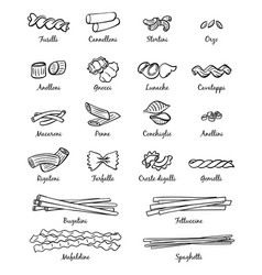 linear pictures of classical italian food vector image vector image