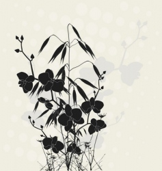 orchids and oats vector image