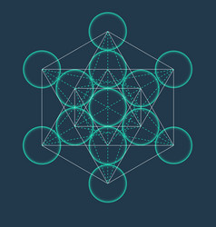 metatrons cube flower of life sacred geometric vector image