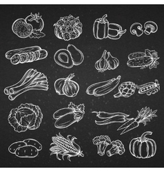 Set of different hand drawn decorative vector