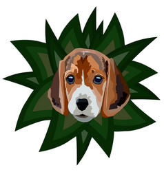 Spotted dog vector