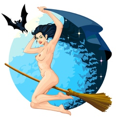 Witch flying 03 vector