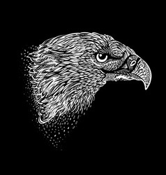 Hand-drawn eagle vector