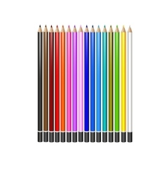 a set of colored pencils on white background vector image