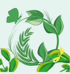 Nature branches plants with leaves vector