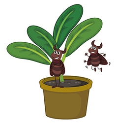 A plant with two playful insects vector