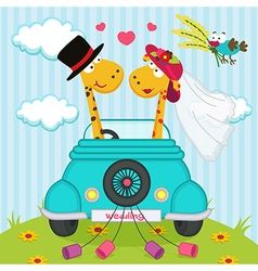 Wedding with giraffes vector