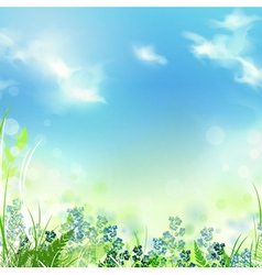 summer or spring meadow vector image vector image