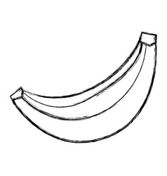 sweet banana fruit vector image vector image
