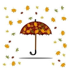 Falling autumn leaves and red umbrella vector