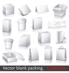 blank packing vector image