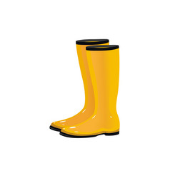 Pair of rain boots wellingtons autumn footwear vector