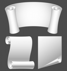 Paper scrolls vector