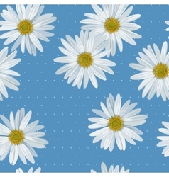 Camomile seamless vector