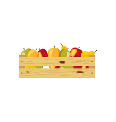 autumn vegetables in wooden storage box vector image