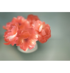 Shining flowers roses in vase vector