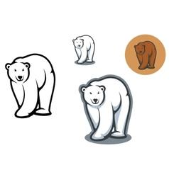 Bear mascots vector image