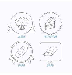 Sweet muffin cake and bread icons vector