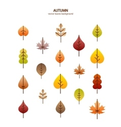 fall leaves tree background vector image