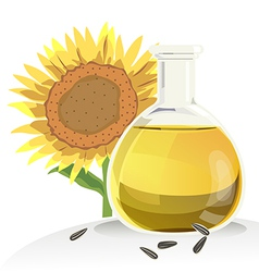 sunflower oil vector image vector image