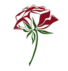 Red and green shade rose vector