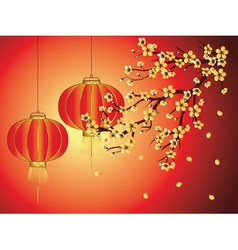 Chinese lantern with sakura branch4 vector