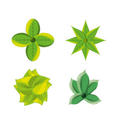 set of natural and ecology icons flowers design vector image