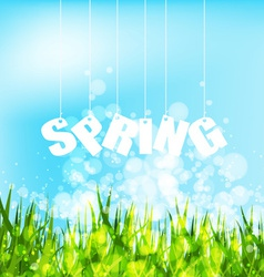 Spring word hanging on a strings background vector