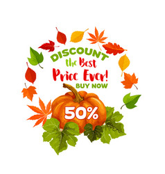Autumn sale discount pumpkin poster vector