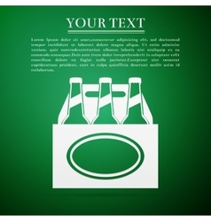 Pack of Beer flat icon on green background vector image vector image