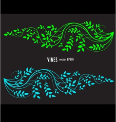 Silhouette of vine and leaves floral decorative vector