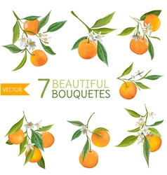 Vintage Oranges Flowers and Leaves Orange Bouquete vector image vector image