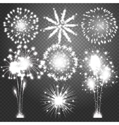 Firework bursting in various shapes sparkling vector