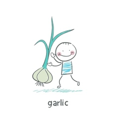 Garlic and people vector