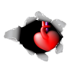 hole and heart vector image