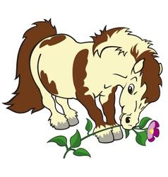little pony vector image