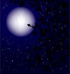mystery night vector image