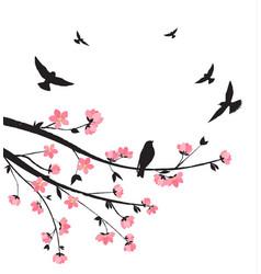 Spring sakura blossom vector