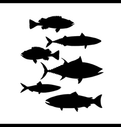 Silhouettes fish set vector