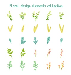 Decorative leaves and flowers design elements vector