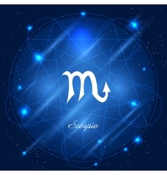 Scorpio sign of the zodiac vector image