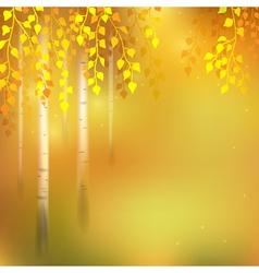 Birch autumn vector