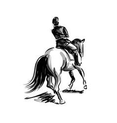 Ink sketch rider on horseback vector