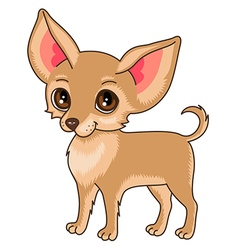 Little dog vector