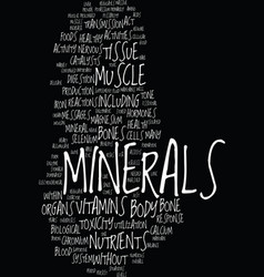 minerals good for your bones organs and tissue vector image vector image