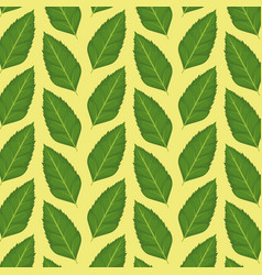pattern color set decorative of green leaves plant vector image vector image