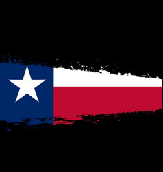 Texas flag splash vector