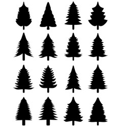 black christmas trees vector image