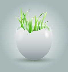 Eggshell with growing grass vector